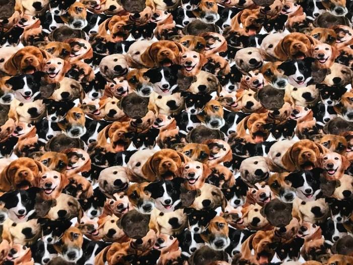 Trikå tyg med olika hundraser