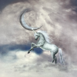 Paneler  Moon and unicorn